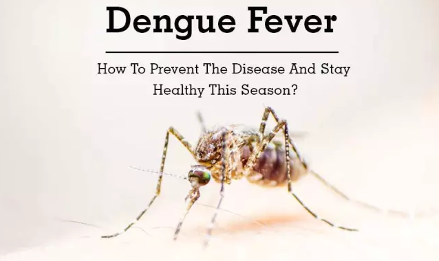 Dengue virus infection